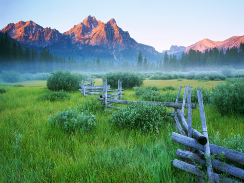 rail-fence-spring-mountain-meadow-tangledwing