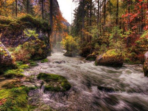 autumn_riverscape_by_burtn-d5hrtnm