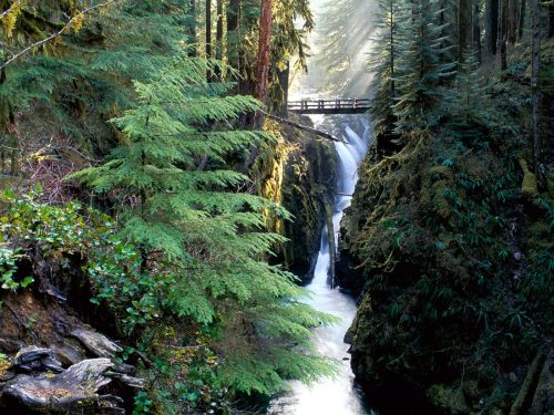 Bridge_Over_Sol_Duc_Falls_Olympic_National_Park