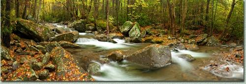 Smoky Mountain National Pak Photo