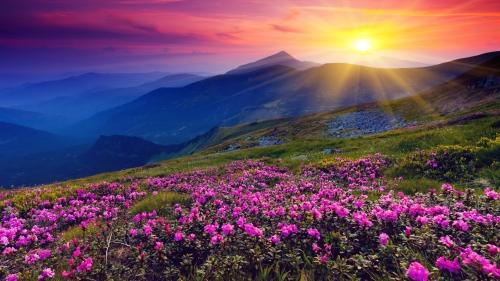 sun-shining-over-hills-1920x1080-wallpaper-10926