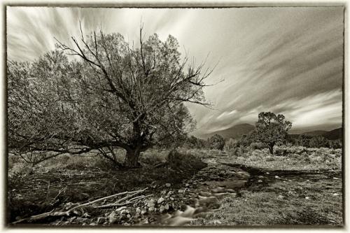Great Basin Natl Park