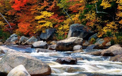 autumn - w087