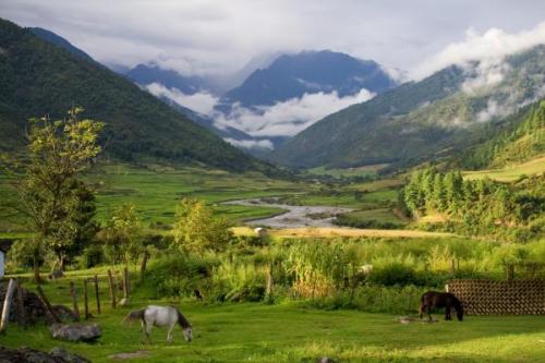 idyllic-landscape