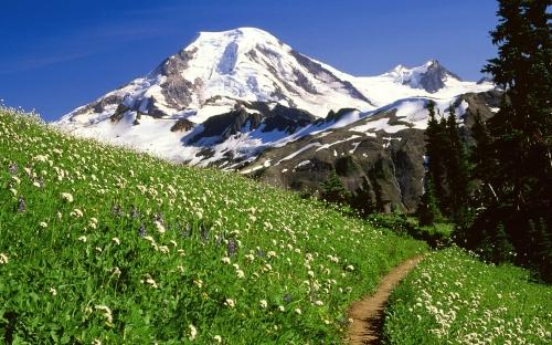 mountains - w402