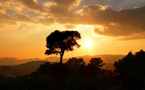 sunsets - w152