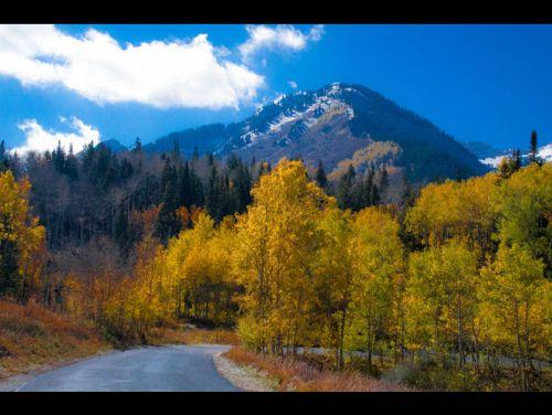 Alpine Loop1