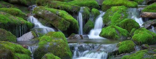 healing-waters-terry-barnes