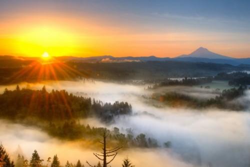 Landscape-Fog-Sunset-485x728
