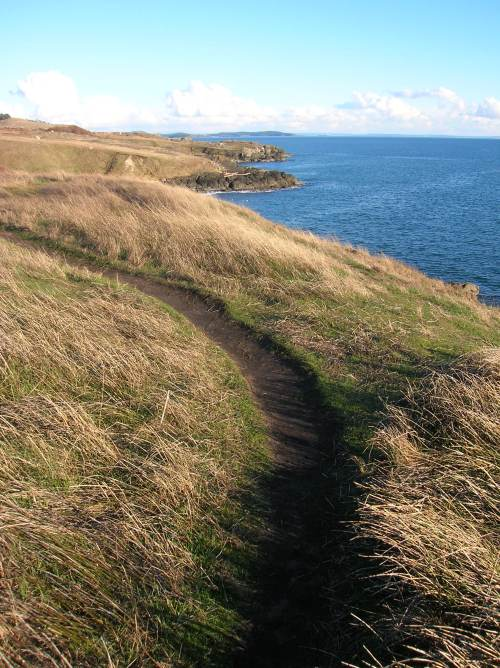 Mount_Finlayson_Trail