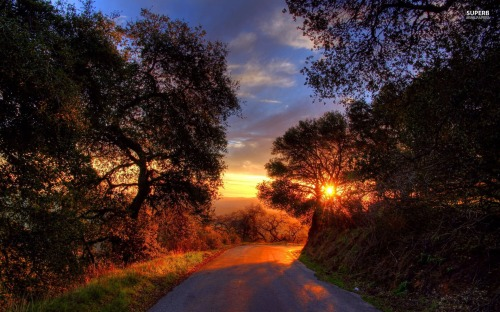 sunset-on-a-mountain-road-18040-1920x1200