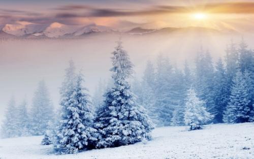snowset