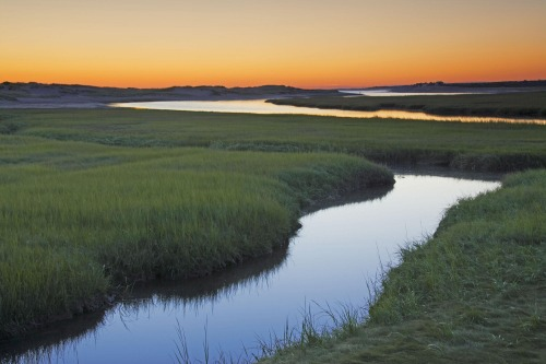 Salt Marsh at Sunrise. Sandwich, Cape Cod, Massachusetts, USA